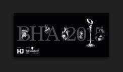 Dafydd Makes The British Hairdressing Awards 2015