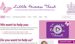 Little Princess Donates to Little Princess Trust